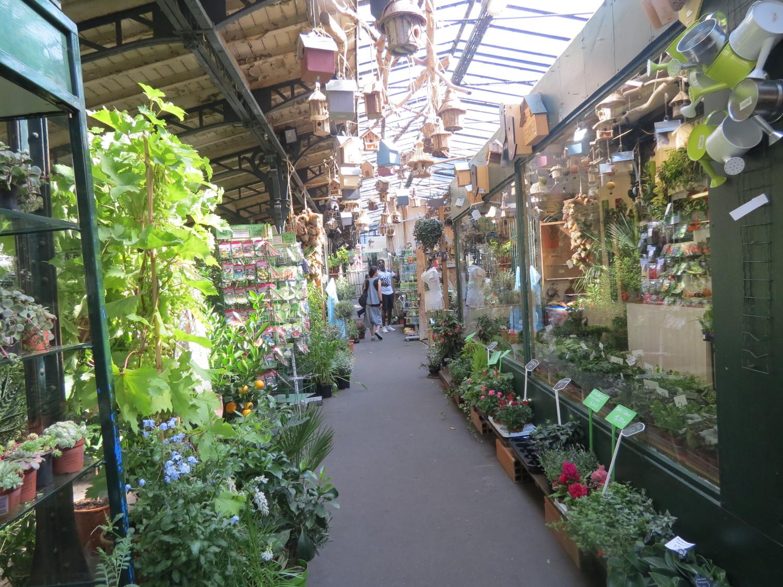 mercato dei fiori parigi