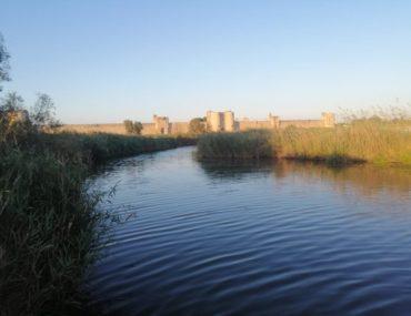 Aigues Mortes Itinerario in Camargue