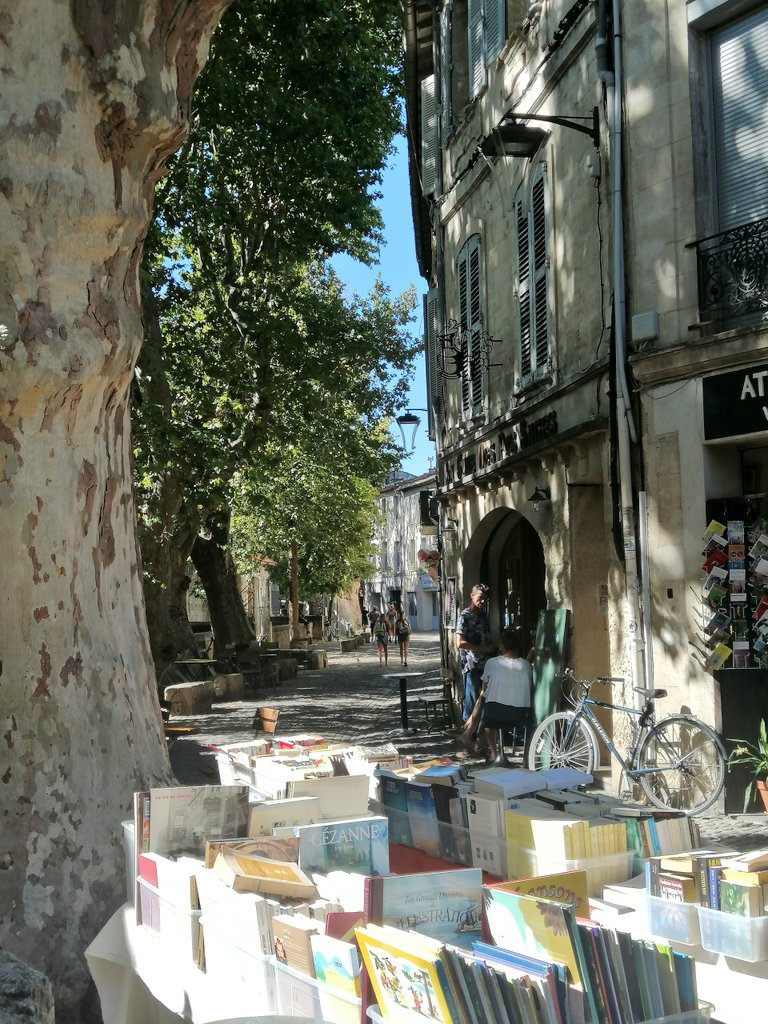 Cosa vedere ad Avignone