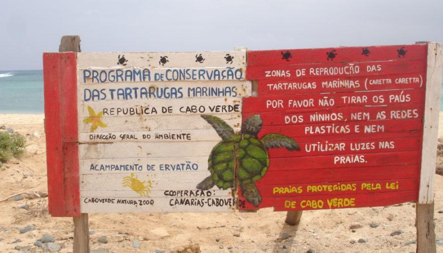 Boavista: la notte delle tartarughe
