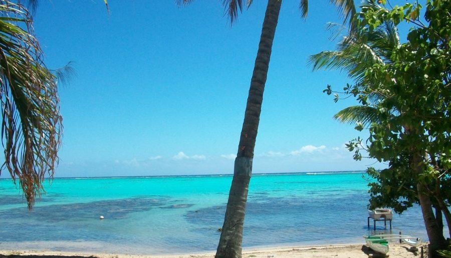 Tahiti e Moorea: il Paradiso esiste davvero!